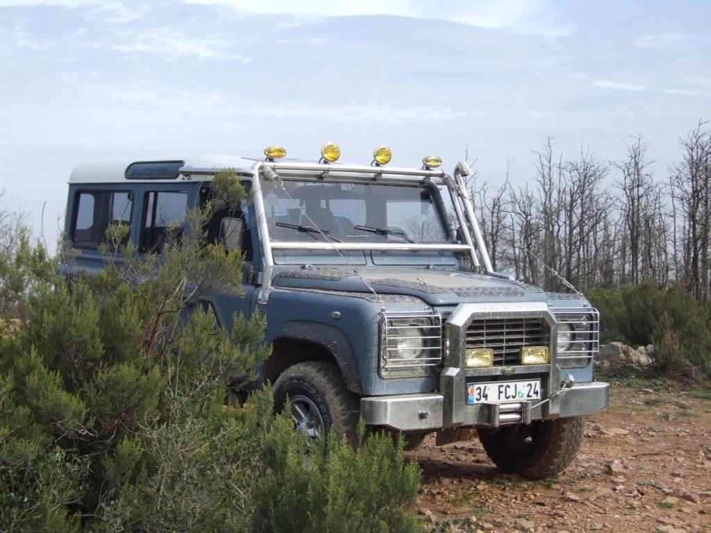 DSCF6703